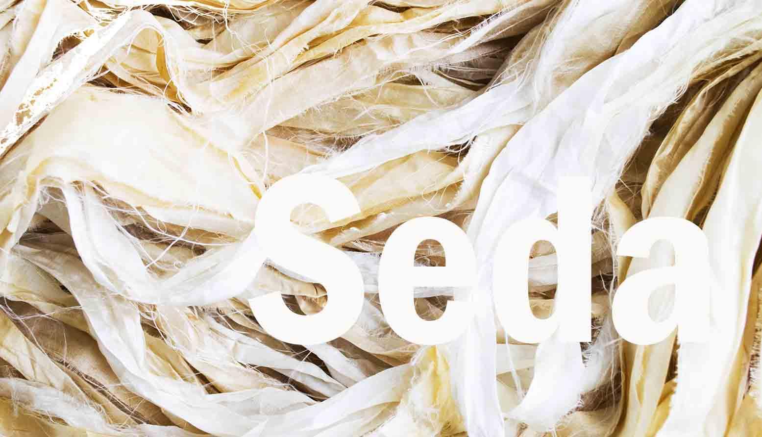 Seda banner blog